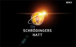 Schrödingers katt